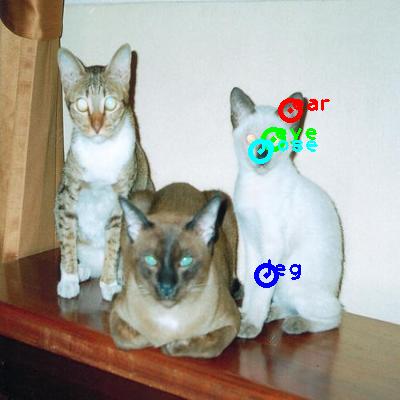 2008_005780-cat_0_ppm10.png