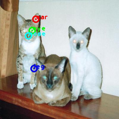2008_005780-cat_2_ppm10.png