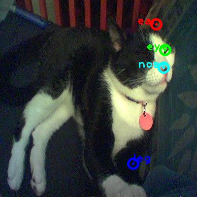 2008_006175-cat_0_ppm10.png