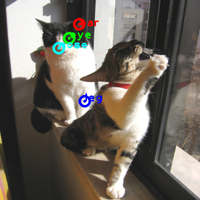 2008_006329-cat_0_ppm10.png