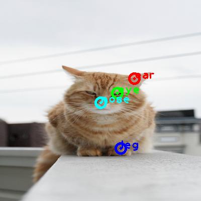 2008_007082-cat_0_ppm10.png
