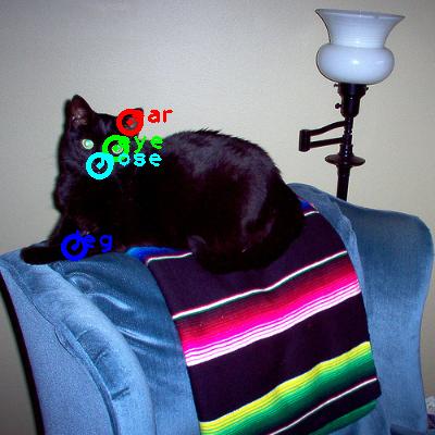 2008_007085-cat_0_ppm10.png