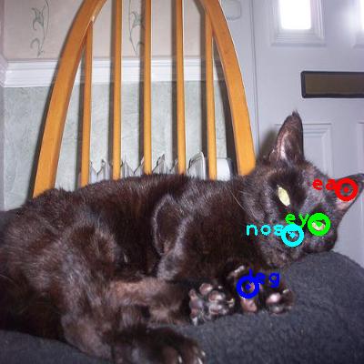2008_007106-cat_0_ppm10.png