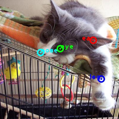 2008_007327-cat_0_ppm10.png