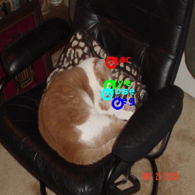 2008_007363-cat_0_ppm10.png
