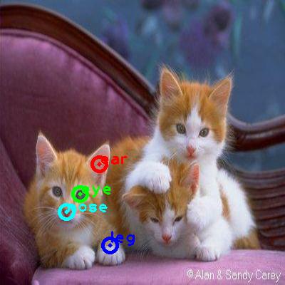 2008_007404-cat_0_ppm10.png