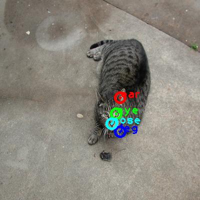 2008_007842-cat_0_ppm10.png