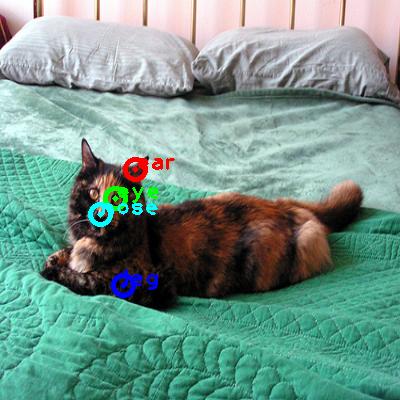 2008_007873-cat_0_ppm10.png
