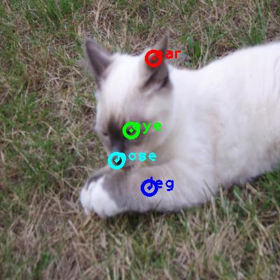2008_007914-cat_0_ppm10.png