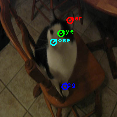 2008_007941-cat_0_ppm10.png