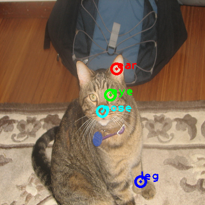 2008_007964-cat_0_ppm10.png