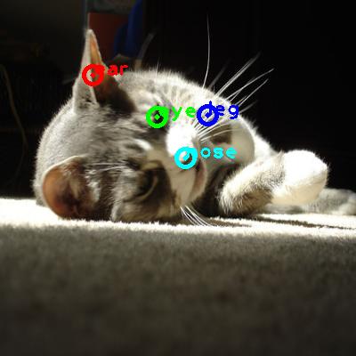 2008_007975-cat_0_ppm10.png