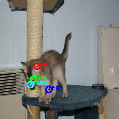 2009_000553-cat_0_ppm10.png