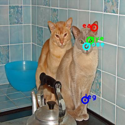 2009_000966-cat_0_ppm10.png