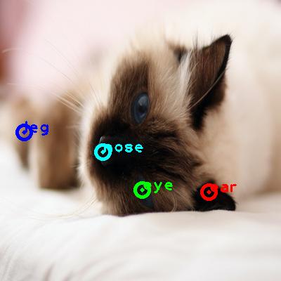 2009_001198-cat_0_ppm10.png
