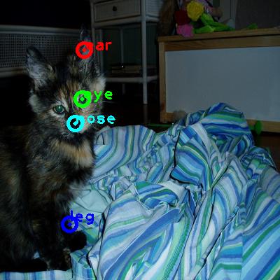 2009_001411-cat_0_ppm10.png