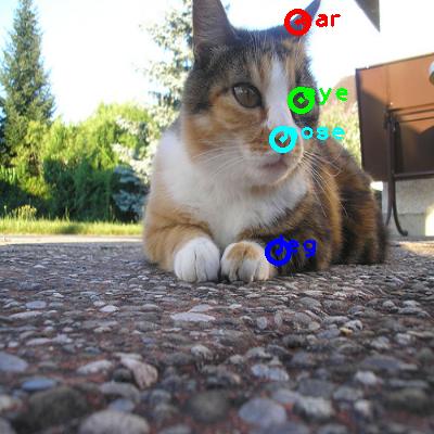 2009_001502-cat_0_ppm10.png