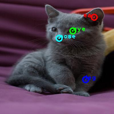 2009_001948-cat_0_ppm10.png