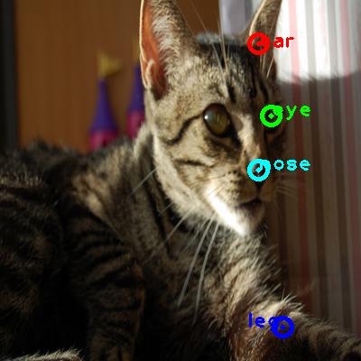2009_002053-cat_0_ppm10.png