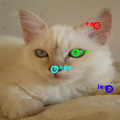 2009_002104-cat_0_ppm10.png