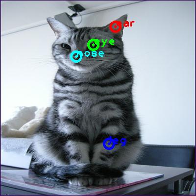 2009_002228-cat_0_ppm10.png