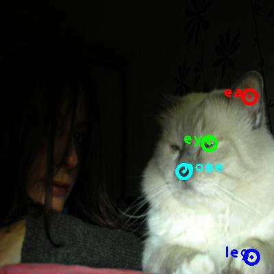 2009_002439-cat_0_ppm10.png
