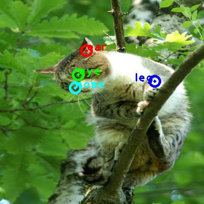 2009_002527-cat_0_ppm10.png