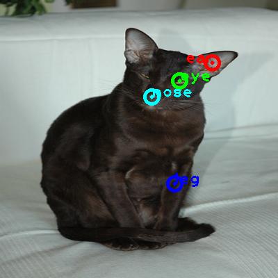 2009_002592-cat_0_ppm10.png