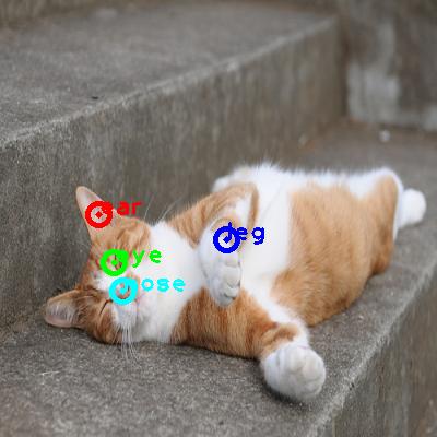 2009_002917-cat_0_ppm10.png