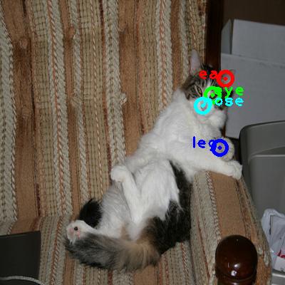 2009_003129-cat_0_ppm10.png
