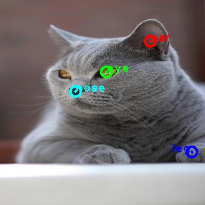 2009_003201-cat_0_ppm10.png