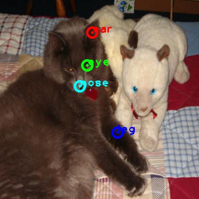 2009_003663-cat_0_ppm10.png