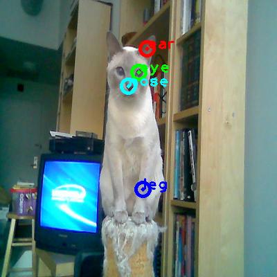 2009_004128-cat_0_ppm10.png