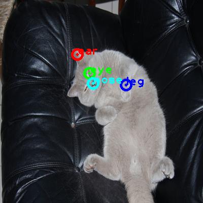 2009_004291-cat_0_ppm10.png