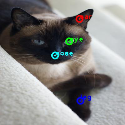 2009_004424-cat_0_ppm10.png