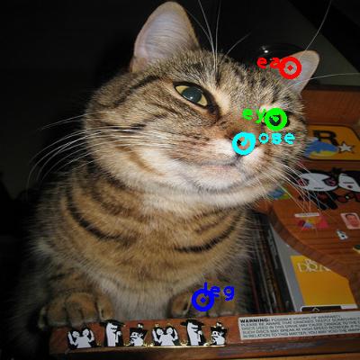 2009_004448-cat_0_ppm10.png