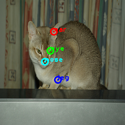 2009_004940-cat_0_ppm10.png