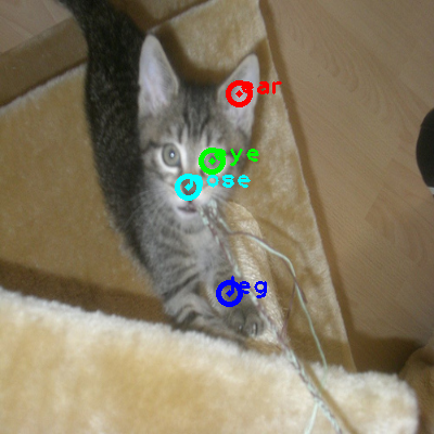 2009_005219-cat_0_ppm10.png