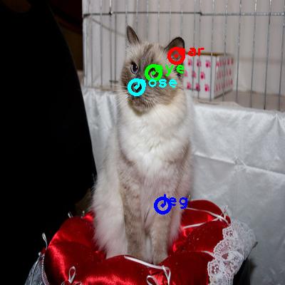 2010_000009-cat_0_ppm10.png
