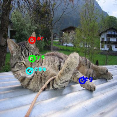 2010_000114-cat_0_ppm10.png