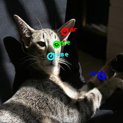 2010_000218-cat_0_ppm10.png