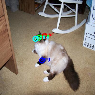 2010_000439-cat_0_ppm10.png