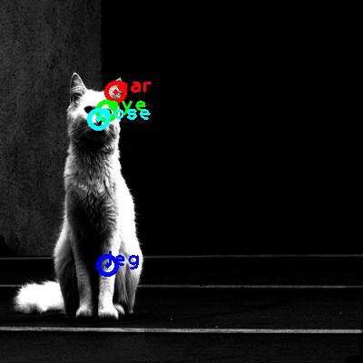 2010_000468-cat_0_ppm10.png