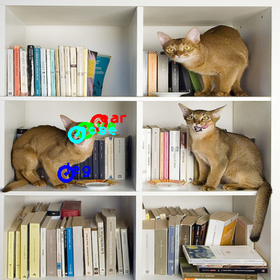 2010_000536-cat_0_ppm10.png