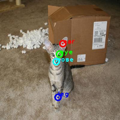 2010_000828-cat_0_ppm10.png
