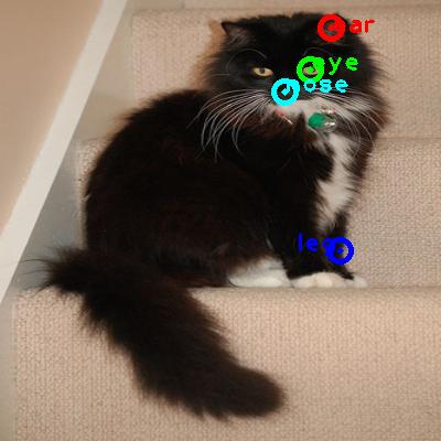 2010_000996-cat_0_ppm10.png