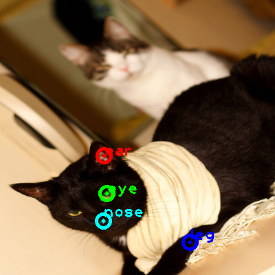 2010_001103-cat_0_ppm10.png