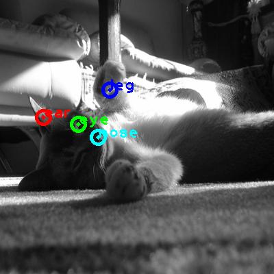 2010_001147-cat_0_ppm10.png