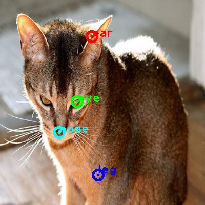 2010_001555-cat_0_ppm10.png