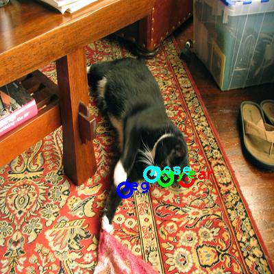 2010_001602-cat_0_ppm10.png